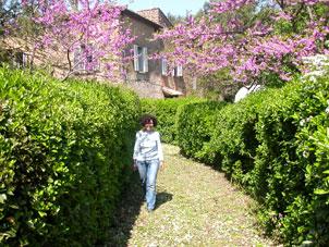 Ferienhaus Volterra