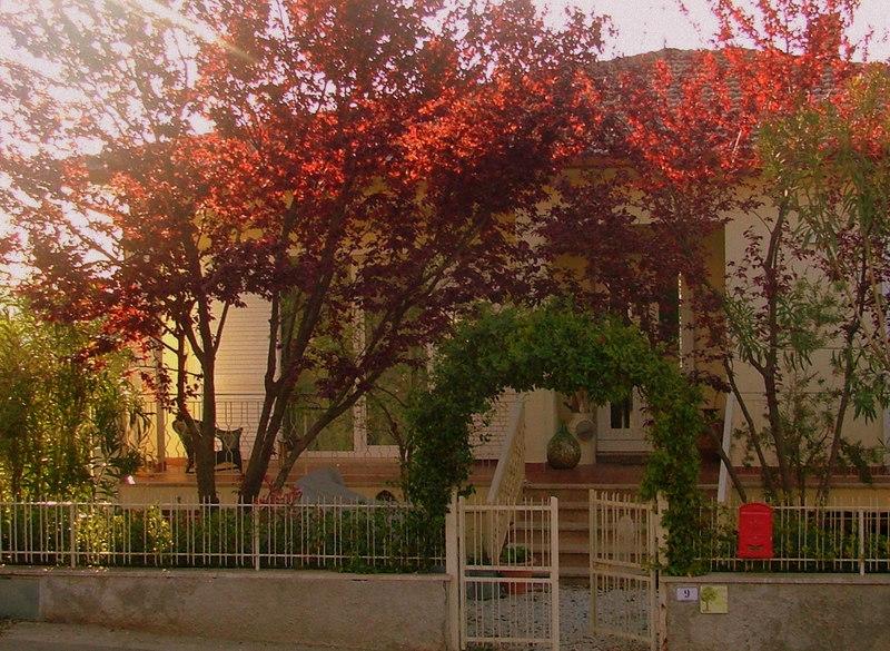 Pisa Livorno Lucca Firenze Siena Chianti
